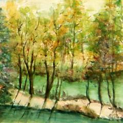 Bäume am Wasser 2